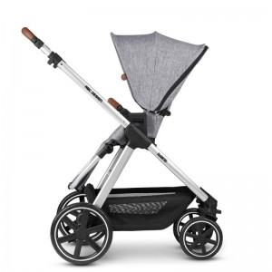 Carucior 2 in 1 Swing (2021) - ABC Design